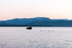 Anatre e piccola barca su un lago blu Immagini Stock Libere da Diritti