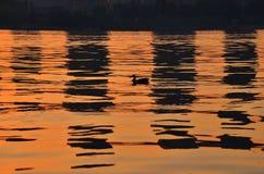 anatre e riflessione di costruzione al tramonto Fotografia Stock Libera da Diritti