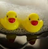 Anatre gialle del bagno Fotografia Stock Libera da Diritti