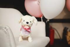 Anazing kaka för födelsedag för flicka` s Royaltyfria Foton