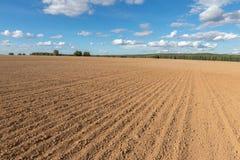 Anbaufähiger Feldbauernhof und blauer Himmel Lizenzfreies Stockfoto