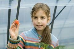 Anbietenerdbeere des jungen Mädchens Lizenzfreie Stockfotografie