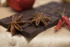 Anbud mjölkar choklad och kanel med anis på a Royaltyfri Fotografi