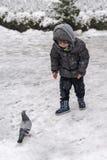 Ancara/Turquia 6 de dezembro de 2019: Um menino e um pombo em uma comunicação na neve em um parque imagens de stock