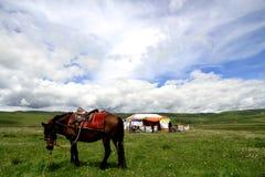 Ancestor Tower Prairie Scenery Royalty Free Stock Image