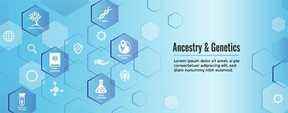 Ancestry or Genealogy Icon Set web banner w Family Tree Album, f. Ancestry / Genealogy Icon Set web banner with Family Tree Album, family record, etc vector illustration