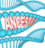 Ancestry Word in DNA Research Your Genealogy Ancestors. The word Ancestry in a DNA strand representing the search for your past by researching your genetics royalty free illustration