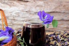 Anchan kwiatów woda i świezi anchan kwiaty purpurowi Zdjęcie Stock