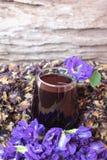 Anchan kwiatów woda i świezi anchan kwiaty purpurowi Obraz Stock