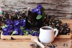 Anchan kwiatów woda i świezi anchan kwiaty purpurowi Fotografia Royalty Free