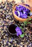Anchan kwiatów woda i świezi anchan kwiaty purpurowi Zdjęcia Royalty Free