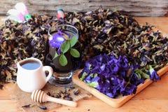 Anchan kwiatów woda i świezi anchan kwiaty purpurowi Obraz Royalty Free