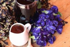 Anchan kwiatów woda i świezi anchan kwiaty purpurowi Zdjęcie Royalty Free