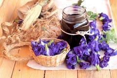 Anchan kwiecenia woda i świezi anchan kwiaty purpurowi Fotografia Royalty Free