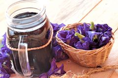 Anchan kwiecenia woda i świezi anchan kwiaty purpurowi Zdjęcie Stock