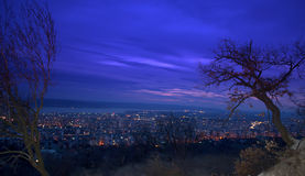 Anche cielo blu, gli alberi e le luci notturne profondi della città Immagini Stock Libere da Diritti