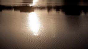 Anche il tramonto è visualizzato sull'acqua del fiume archivi video