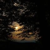 Anche sole sopra i Vosgi guardati attraverso gli alberi scuri immagini stock