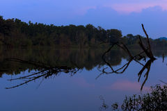 Anche vicino al lago Fotografia Stock
