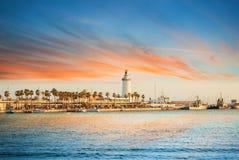 Anche vista superiore aerea panoramica ad una passeggiata con le palme, sho fotografia stock libera da diritti
