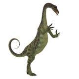 Anchisaurus dinosaur na bielu ilustracja wektor