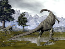 Anchisaurus dinosaurs - 3D render. Two anchisaurus dinosaurs next to pine trees and a swamp in the mountain - 3D render stock illustration