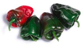 Ancho Grande chile peppers, top view, paths. Ancho Grande chile peppers Capsicum annuum, top view. Clipping paths, shadow separated Stock Photos