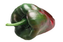 Ancho Grande chile, ripening, paths Royalty Free Stock Photography