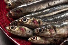 Anchois de poissons sur la planche à découper et le plat en bois images stock