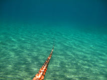 Anchor Chain Underwater v2 Royalty Free Stock Photos