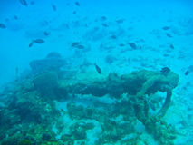 Anchor from a Shipwreck at the bottom of the ocean. In barbados Royalty Free Stock Image