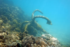 Anchor under the sea. Old rusty anchor with broken line underwater Royalty Free Stock Image