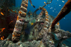 Anchor winch of the Thistlegorm. Stock Photos