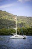 Anchored catamaran stock images
