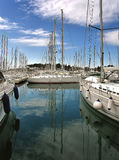 Anchored luxury sailboats Stock Photography