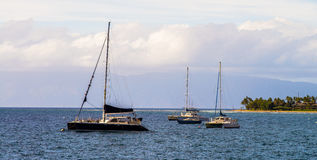 Anchored sailboats, lahaina, maui Royalty Free Stock Photography