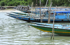 Anchored traditional fishing boats, chilka lake Royalty Free Stock Photography