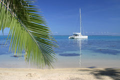 Anchored yacht. By the lonely beach. Island Moorea. French Polynesia Stock Photos