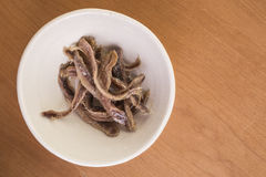 Anchovey Fillets Royalty Free Stock Photography