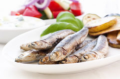 Anchovies. With Chips and Farmer Salad Royalty Free Stock Photo