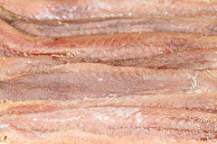 Anchovies Background. Background of salted fillets of anchovies. Horizontal view Royalty Free Stock Image