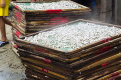 Anchovies drying for fish sauce production in Mui Ne factory, Vietnam Royalty Free Stock Photo