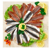 Anchovies fillet Stock Photography