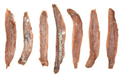 Anchovies Fillets. Group of many salted anchovies fillets. Isolated on white Royalty Free Stock Photography