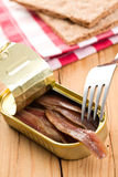 Anchovies fillets in tin can Royalty Free Stock Photo