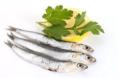 Anchovies with lemon and parsley Stock Photography
