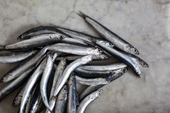 Anchovies on a marble background, acciughe Royalty Free Stock Photo