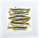 Anchovies marinated in olive oil, cooked at a low temperature. Royalty Free Stock Photography