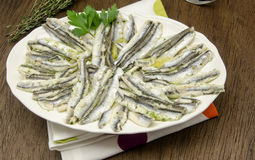 Anchovies Stock Photography