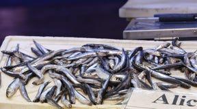 anchovies at market Royalty Free Stock Image